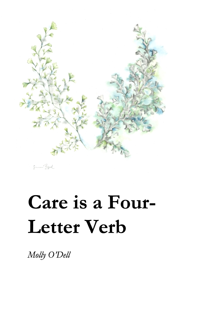 Care is a Four Letter Word Cover